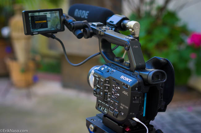 FS5 with RODE NTG