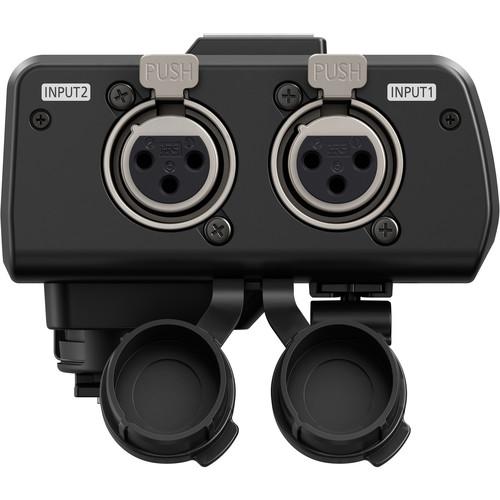 Panasonic DMW-XLR1 inputs